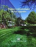 Plagasyenfermedadesdeloscéspedes (Compendium of Plant Diesease Series)