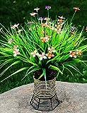 Aufrechtzuerhalten,Künstliche Blumen, Kunststoff Pflanzen Künstliche Blumen , rose