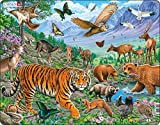 Larsen FH39 The Amur Tiger in Siberian Summer, Jigsaw Puzzle with 36 Pieces