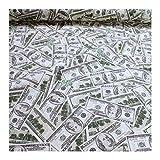 Stoff Baumwolle Polyester 100 Dollar Note Benjamin Franklin