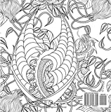 Song of the Wings Coloring Book: Dragons Adult Coloring Book (Dragon Thrones) Vergleich