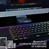 Dierya Tastiera da Gioco Meccanica 60% True RGB retroilluminato Bluetooth 4.0 Tastiera cablata/Wireless LED Computer per Lapt