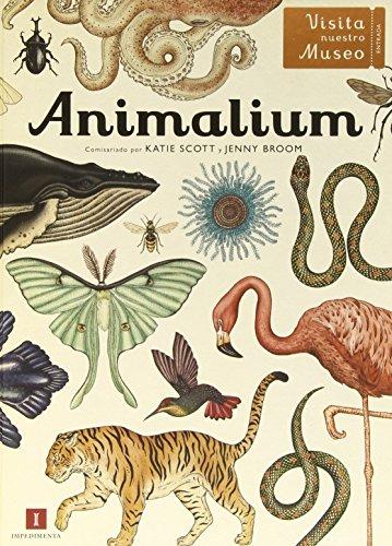 Descargar Libro Animalium (El chico amarillo) de Katie Scott
