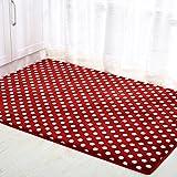 XCJ Floor Mat/Doormat/Door Mats/Lobby Entrance Door Mats/Indoor Mats-C 80X120Cm(31X47Inch),L,70x110cm(28x43inch)