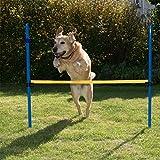 Namsan Agility - Hundetraining Agility Set Hunde Hürdenparcours Sprungtraining
