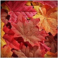 Whaline 300 Pieces Artificial Autumn Maple Leaves Mixed Fall Colored Leaf for Weddings, Events, Art Scrapbooking and Decorations (Red)