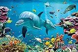 GB eye Ltd Tropische Unterwasserwelt Poster, 92x61