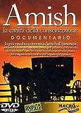 Amish [Italia] [DVD]