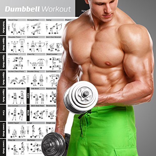 Dumbbell Workout Exercise – Fitness Planners