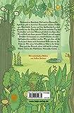 Petronella Apfelmus - Hexenbuch und Schn�ffelnase: Band 5