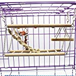 Gaddrt Animal Activity Toy Parrot Climbing Net Parrot Ladder Swing Budgie Hanging Toy Suspension Bridge Hammock Swing Ladder 11