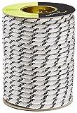 Edelrid Performance Static Rope 10mm 50m Snow 2018 Kletterseil