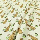 Brauner Hase Muster für Tiere-Design, Velours-Vorhang mit