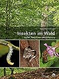 Insekten im Wald: Vielfalt, Funktionen und Bedeutung