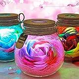 LED Licht Farbe ändern, RGB Dimmer Lampe Kreative romantische Rose Flasche mit Fernbedienung