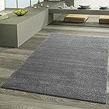T&T Design - Frieze - Tapis design de haute qualité Pour le salon Aspect luxueux Gris, gris, 80x150 cm...