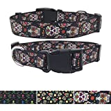 AIDIA Pet Dog Collar Unique Design Skull and Crossbones Dog Collar and Lead Sets for Large Dogs Collar Adjustable (M, Flower Skull)
