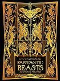 1art1 Animali Fantastici - I Crimini di Grindelwald - Animali Fantastici E Dove Trovarli Stampa su Tela (80 x 60cm)