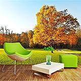 HUANGYAHUI Wandbilder 3D-Modernen, minimalistischen 5D HD Natur Wald, Liegewiese, Wandbilder, Schlafzimmer, Wohnzimmer, TV, Tapete, Tapeten-300cmX210cm