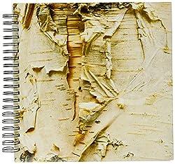 3dRose db_95398_2 Paper Birch Tree, Washington Arboretum, Seattle-Us48 Dgu0233-Darrell Gulin-Memory Book, 12 by 12-Inch