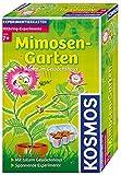 Kosmos 657031 - Mimosen-Garten -