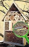 Insektenhotel LOTUS + 2 x Sichtglas + Marienkäferhaus + Schmetterlingshaus, groß 50 cm mit Lotus-Effekt Oberflächen Beschichtung und 2 Sichtgläsern 8 und 11 mm Beobachtungsröhrchen komplett mit Zellstoff und Füllmaterial für Nistkasten gegen Blattläuse, natürliche Blattlausbekämpfung, ein toller Insektenkasten - Insektenhaus