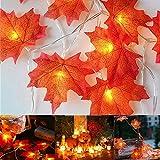 Ahornblatt Lichterketten, Herbstgirlande, Sporgo 3M 20LED Blättergirlande Herbst Dekoration Lichterkette für Halloween Thanksgiving Balkon Terrasse Wohnzimmer Innen Außen Weihnachten