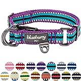 Blueberry Pet 2cm M 3M Reflektierendes Bunt Gestreiftes Violett und Himmelblaue Hundehalsband für Mittelgroße Hunde