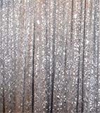 Trlyc 0,9x 2,1m Argent Shimmer Paillettes Rideau Tissu - Best Reviews Guide