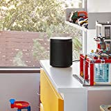 Sonos One - Voice Controlled Smart Speaker with Amazon Alexa Built In (Black)