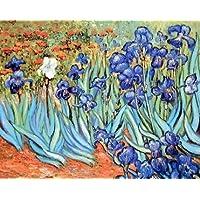 Vincent Van Gogh Irises Flower Floral Garden Fine Art Print Poster (16x20) by Impact