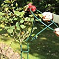 Videx Rosenständer Mainau, Höhe 90 cm, grün von VIDEX GmbH & Co. KG - Du und dein Garten
