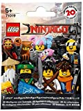 LEGO Ninjago Movie 71019 Minifigures (One Pack Supplied)