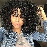 """RUISENNA Afro Perruques de Cheveux Bouclés pour Femme Noire Court Cheveux Crépus 100% Perruque Synthétique Fibre 16 """"200g"""