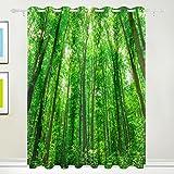 Fenster Vorhang, Luxus Tropical Forest grün Bäume Print isoliert Dick Super Soft Polyester Stoff Home Decor mit Öse 2Platten für Schlafzimmer Wohnzimmer Badezimmer Küche 213,4x 139,7cm