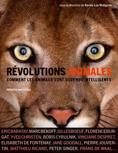 Révolutions animales : comment les animaux sont devenus intelligents