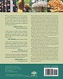 Image de Organic Mushroom Farming and Mycoremediation: Simple to Advanced and Experimental Tec