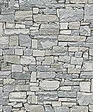 Rasch Tapeten VliesTapete Kollektion Steine und Hölzer, grau, 859102