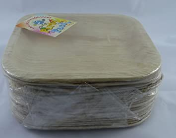 buy areca supari disposable plates stylish square 8 inch party pack online at low prices in india amazonin