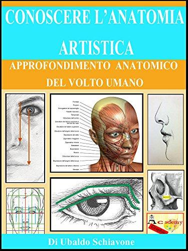Conoscere l'anatomia artistica: Approfondimento anatomico del volto umano