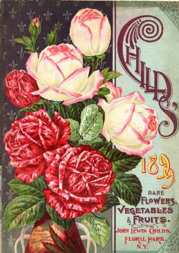 childs-rare-flowers-vegetables-fruits-vintage-seed-cover-picture-sc033-matt-a4-size