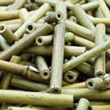 Short Bamboo Sticks for Children and Adults to Create Models or Collages and Decorate Cards and Other Crafts (Pack of 170)