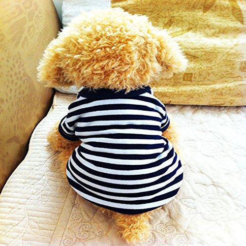 Vestiti / vestiti del cane / maglia / abbigliamento per animali / pet: T-shirt / T-shirt primavera / Pet Supplies / rosa / blu / nero , blank ,