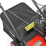 HECHT 5654 Rasen-Lüfter Motorvertikutierer (3,5 PS, 38 cm Arbeitsbreite, 6-fache zentrale Höhenverstellung, 40 Liter Fangkorb) - 9
