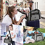 feandrea foldable pet dog carrier handbag with shoulder strap, for car, train and airplane travel, garbage bag included, grey, pdc42gy FEANDREA Pet Carrier, Dog Carrier, Pet Transport Bag, Black PDC42GY 61g 2BgA3Di L