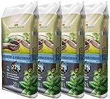 Floragard Kleeschulte Anzucht und Kräutererde 4x20 L • 22% Klimavorteil • wertvollen nachwachsenden Rohstoffen • 80 L