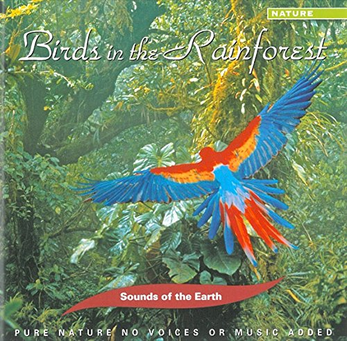 Price comparison product image Birds In The Rainforest
