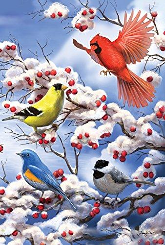 Toland Home Garden 2.820.614,1cm Finch und Kardinal Winter/Vögel