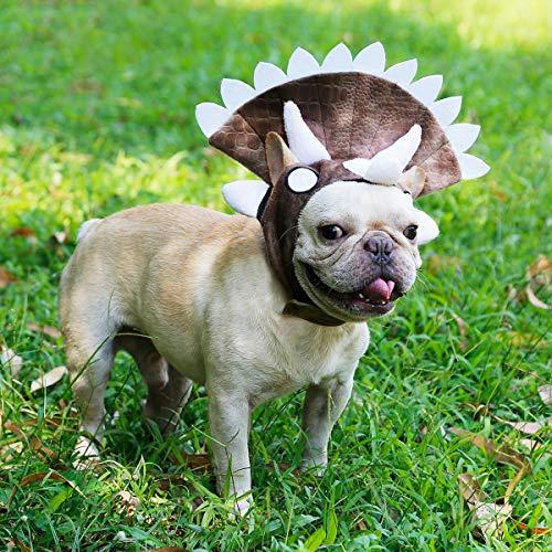 LovelyPet Halloween for Welpen Hunde Katzen Niedlich Pet Headwear Nette Haustier Hund Kopfbedeckungen Triceratops Dinosaurier Hüte
