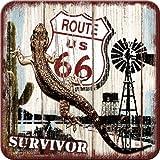 5 Untersetzer - 9 x 9 cm - US Highways Route 66 Desert Survivor